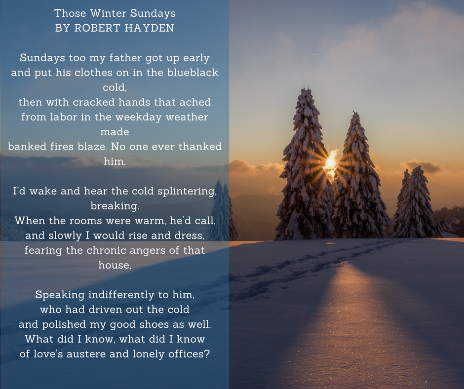 "Relationship in ""Those Winter Sundays"" by Robert Hayd"