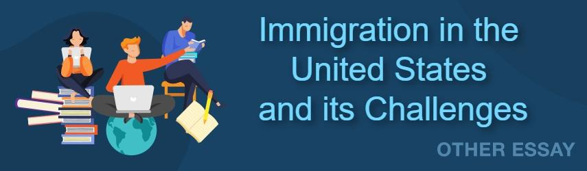 Immigration in the United States and its Challenges | EssaysWorld.net