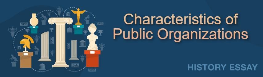 Essay Sample on Characteristics of Public Organizations