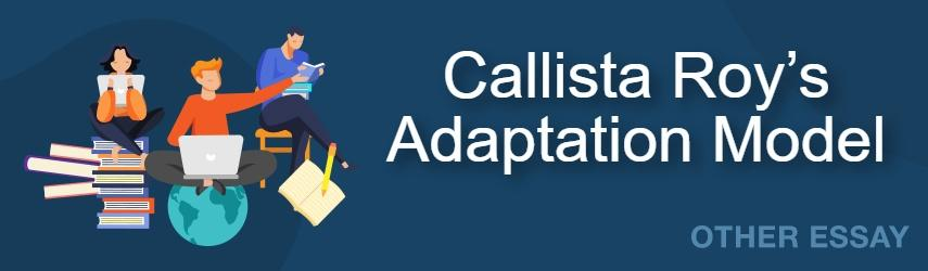 Callista Roy's Adaptation Model Essay Sample