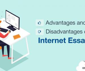Advantages and Disadvantages of Internet Essay